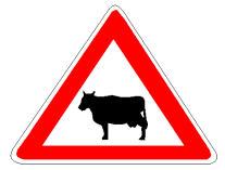 Në prani të sinjalit në figurë duhet të tregojmë kujdes, për shkak të pranisë së mundshme të kafshëve shtëpiake në karrexhatë.