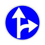 Sinjali në figurë tregon drejtimet e lejuara të lëvizjes.